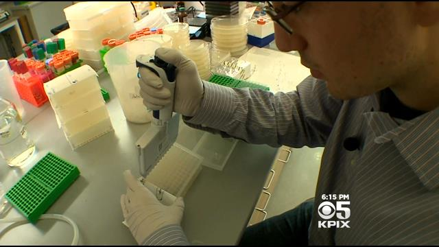 Discovery By UC Berkeley Scientists May Lead To Home Brewing Of Life-Saving Medications
