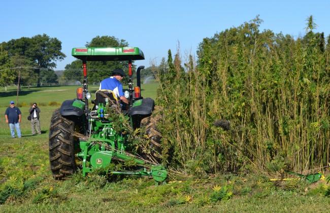 Purdue Extension to host industrial hemp production workshop